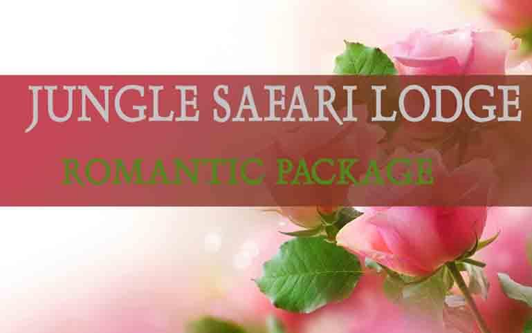 Honeymoon Package Chitwan - Jungle Safari Lodge