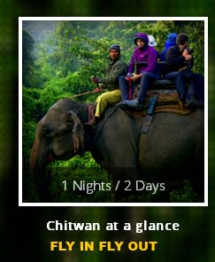 1-nights-2-days-pacakge-fly-in-fly-out-chiwan